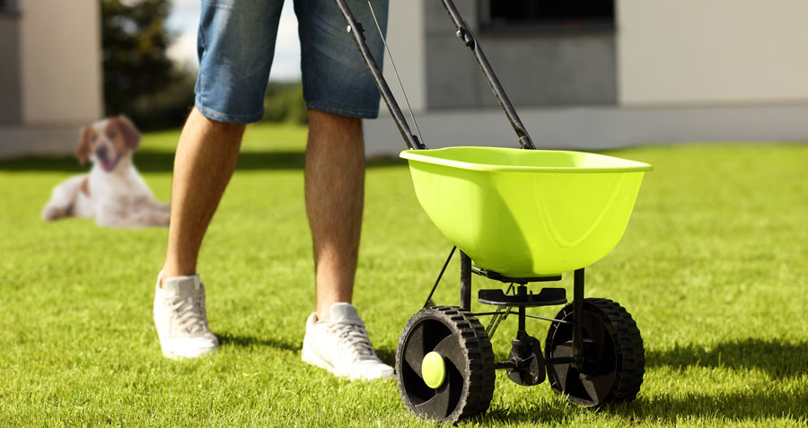 Dogs and fertilizers