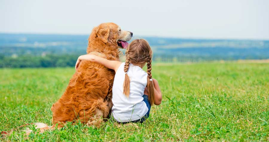 Pet care and hugging your dog
