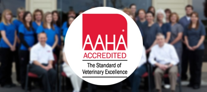 IPH is AAHA Accredited