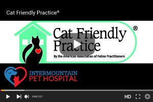 Cat Friendly Practice
