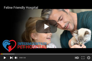 Feline Friendly Hospital.jpg
