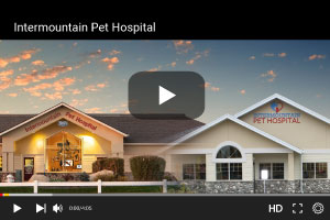 Intermountain Pet Hospital