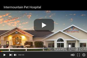 Intermountain Pet Hospital