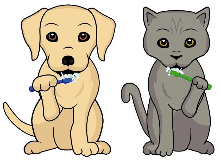 Pet's Brushing their teeth