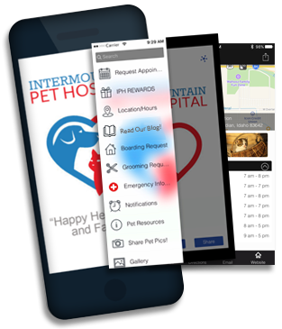 Download the IPH App!